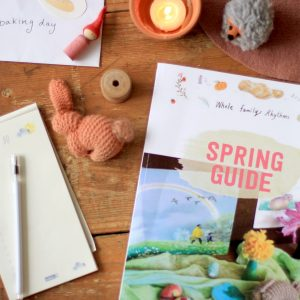 Inside the Spring Guide