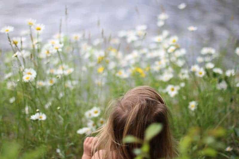 Little girl among wildflowers