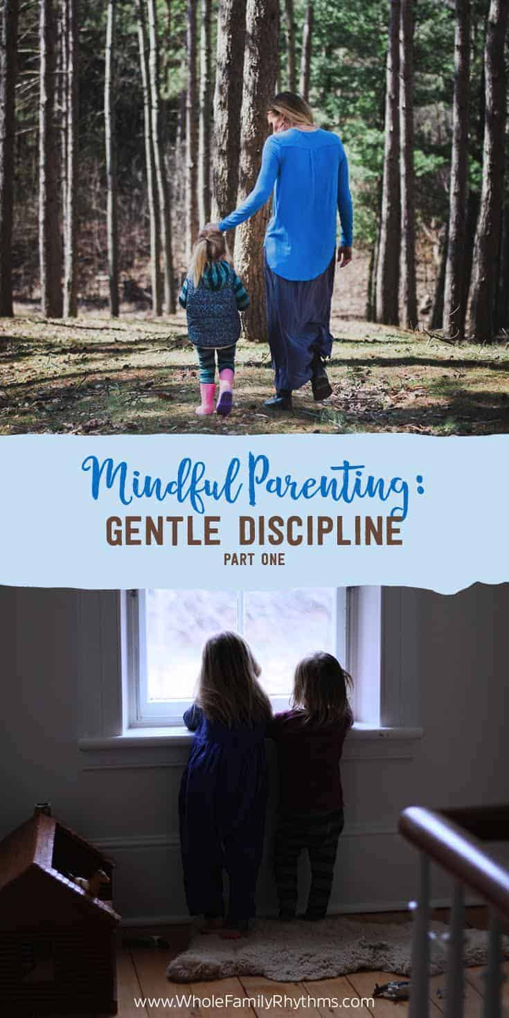 Gentle Discipline: what it is, how it's different from traditional punitive models of discipline, and how we can strive to consistently use it in our homes.