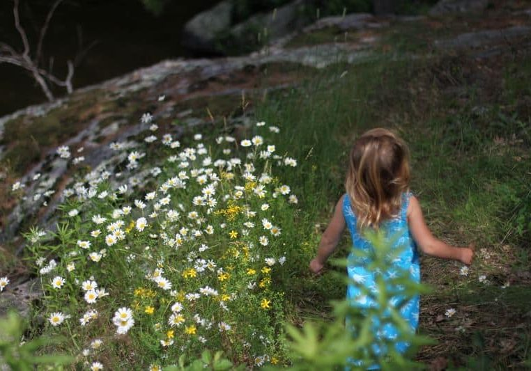 Girl playing in a meadow